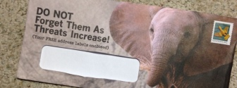 donotforgettheelephants