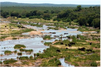 Kruger Natl Park